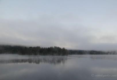 Brouillard de 7h du matin