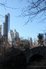 NYC-4359