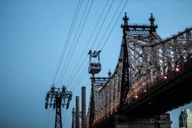 NYC-4469