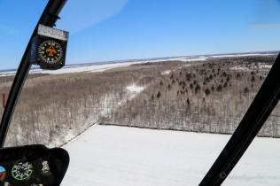 Deuxième atterrissage dans un petit champs en forêt.
